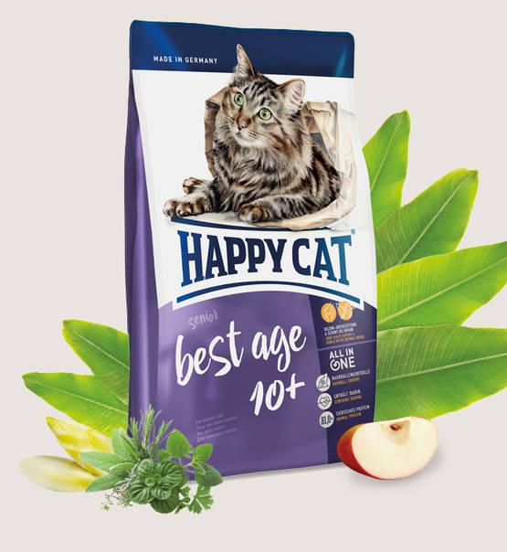 Happy Cat Best Age